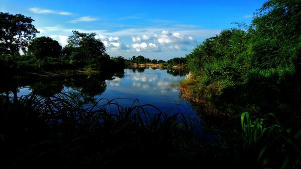 Image of Sky, Nature, Natural landscape, Water, Vegetation, Reflection etc.
