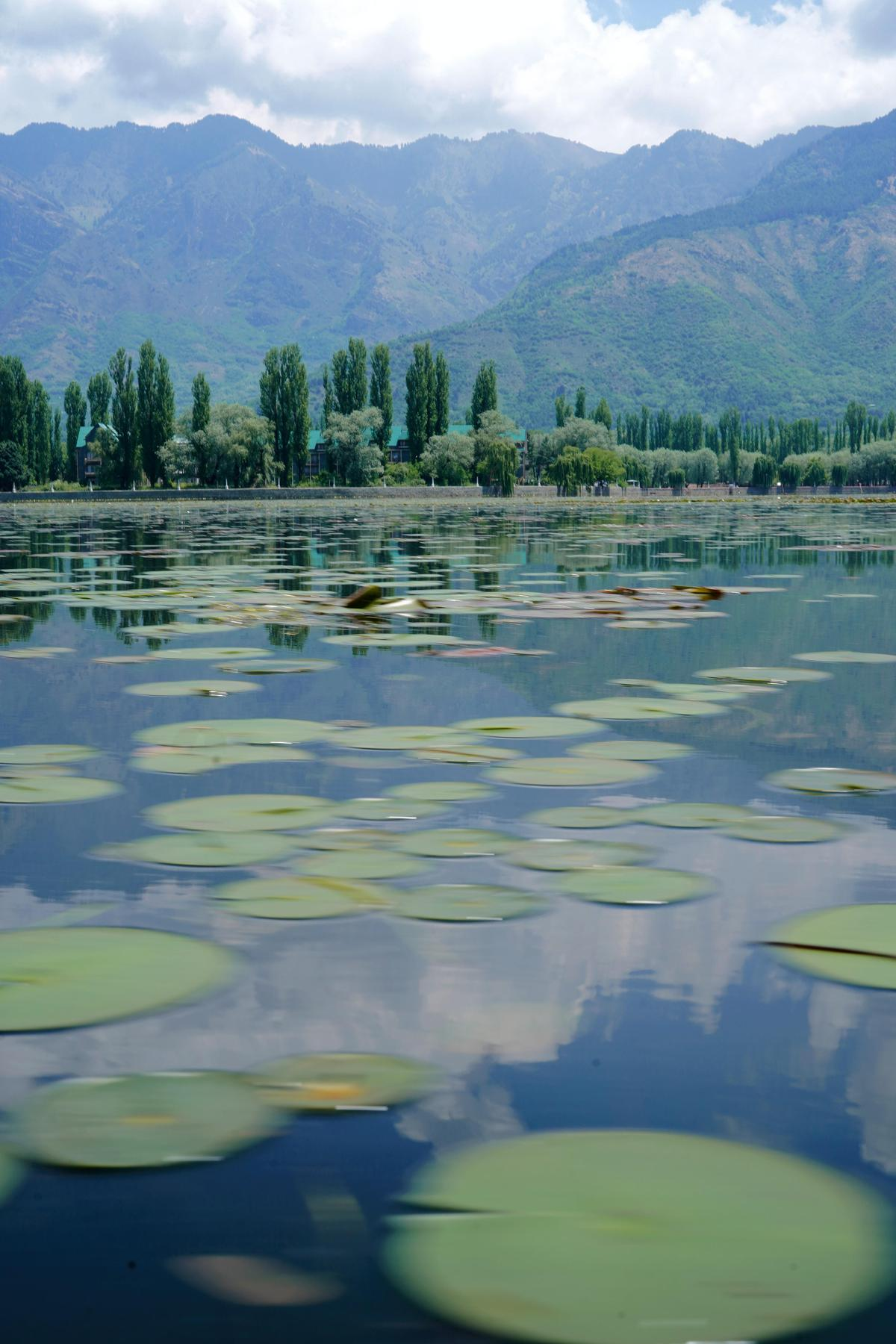 Image of Nature, Sky, Green, Natural landscape, Water, Reflection etc.