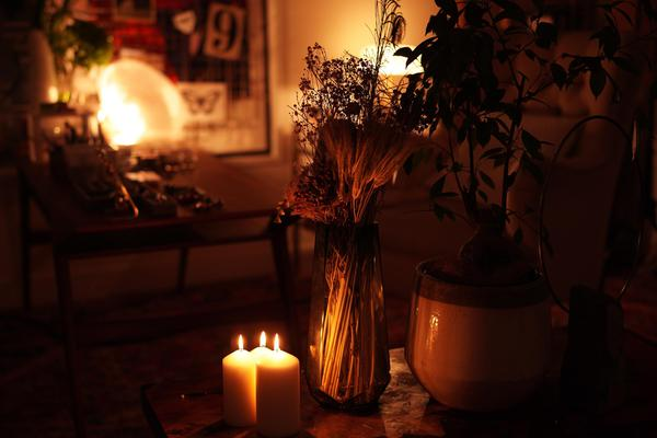 Image of Heat, Plant, Wood, Wax, Lighting, Light etc.