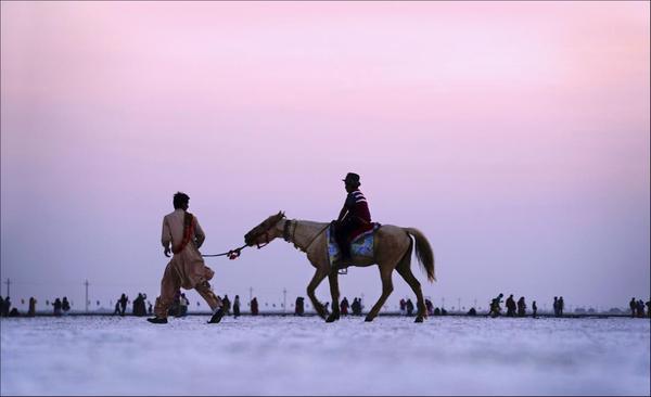 Image of Horse, Rein, Sky, Recreation etc.