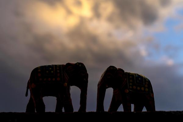 Image of African elephant, Fawn, Terrestrial animal, Sculpture, Natural landscape, Working animal etc.