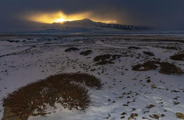 Image of Morning, Freezing, Cloud, Atmospheric phenomenon, Natural landscape, Snow etc.
