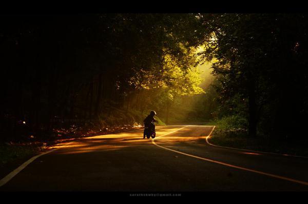 Image of Sky, Road, Night, Light, Atmospheric phenomenon, Darkness etc.