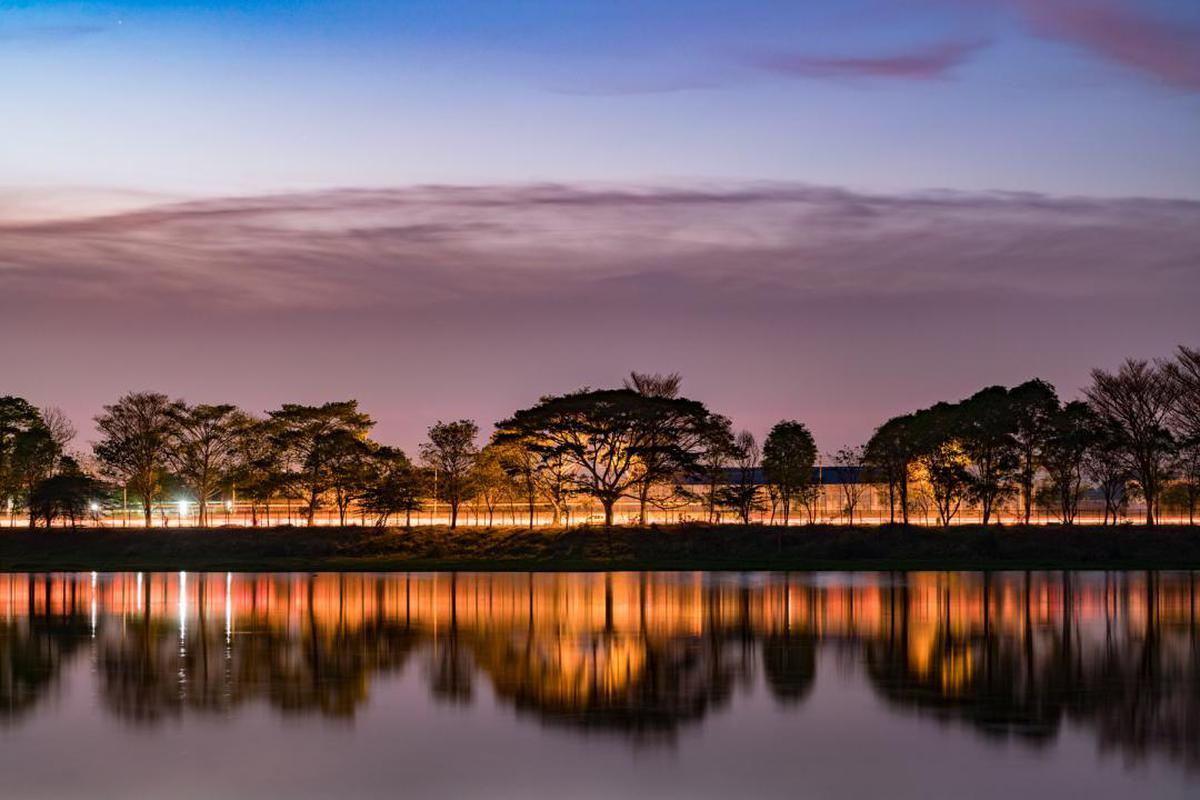 Image of Sky, Reflection, Nature, Water, Tree, Afterglow etc.