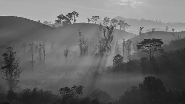 Image of Mist, Atmospheric phenomenon, Nature, Sky, Fog, Morning etc.