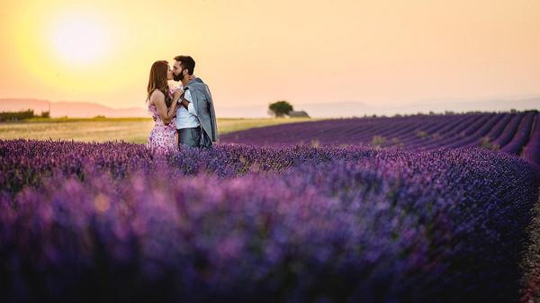 Image of People in nature, Lavender, Photograph, Purple, English lavender, Sky etc.