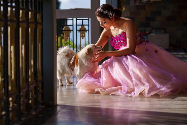 Image of Dress, Ballet tutu, Gown, Pink etc.
