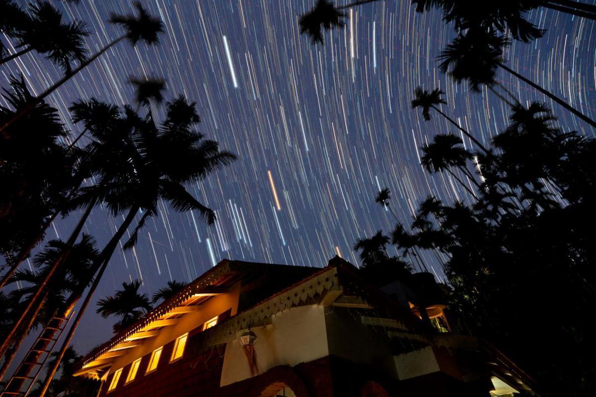 Image of Sky, Night, Light, Tree, Atmosphere etc.