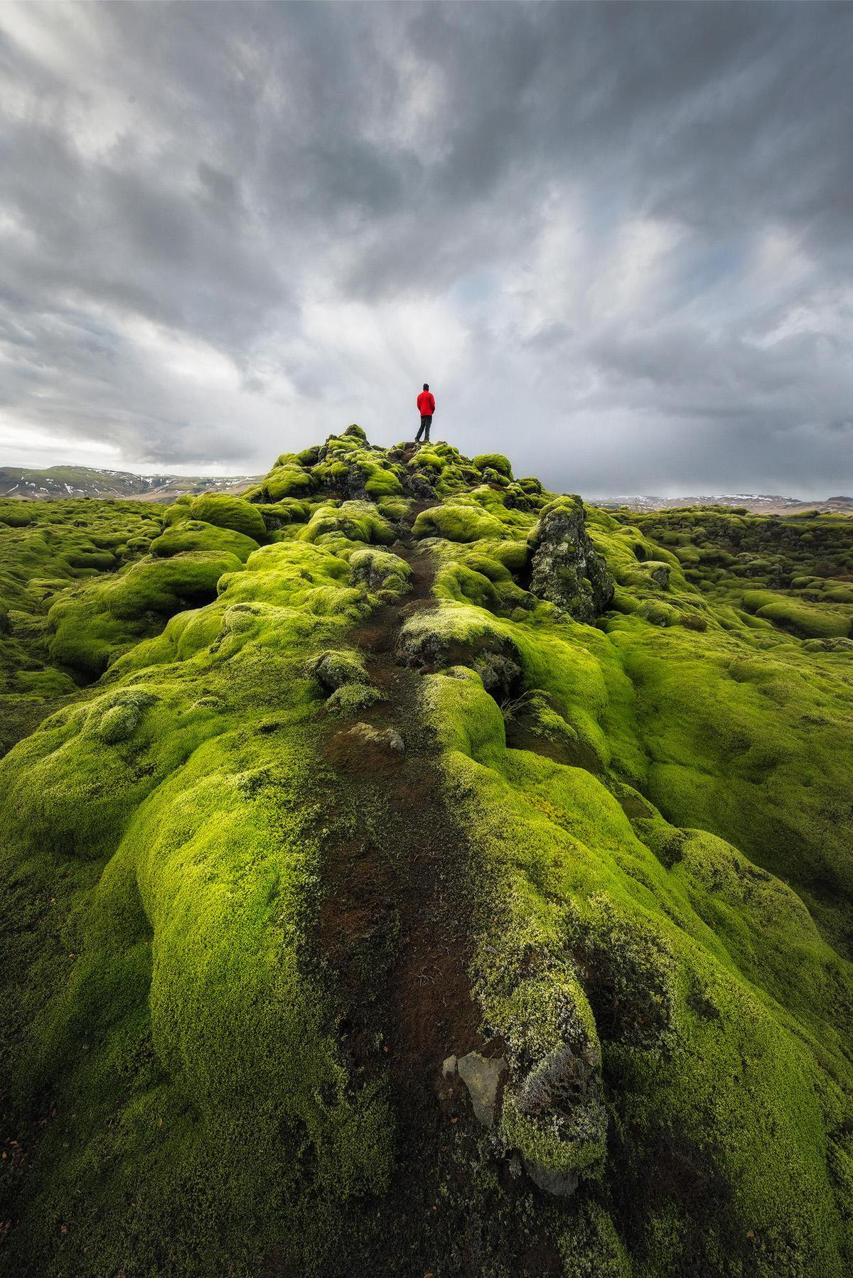 Image of Highland, Nature, Green, Sky, Grass, Fell etc.