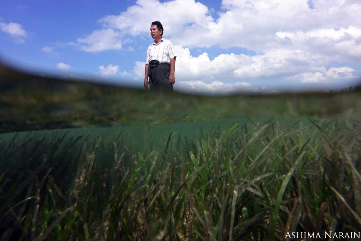 Image of People in nature, Sky, Nature, Photograph, Grassland, Cloud etc.
