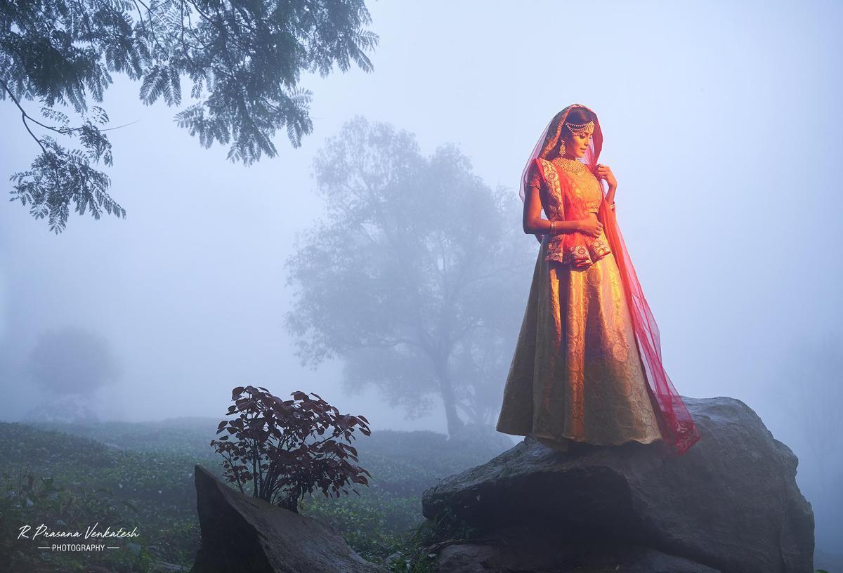 Image of Atmospheric phenomenon, Sky, Fog, Mist, Morning etc.