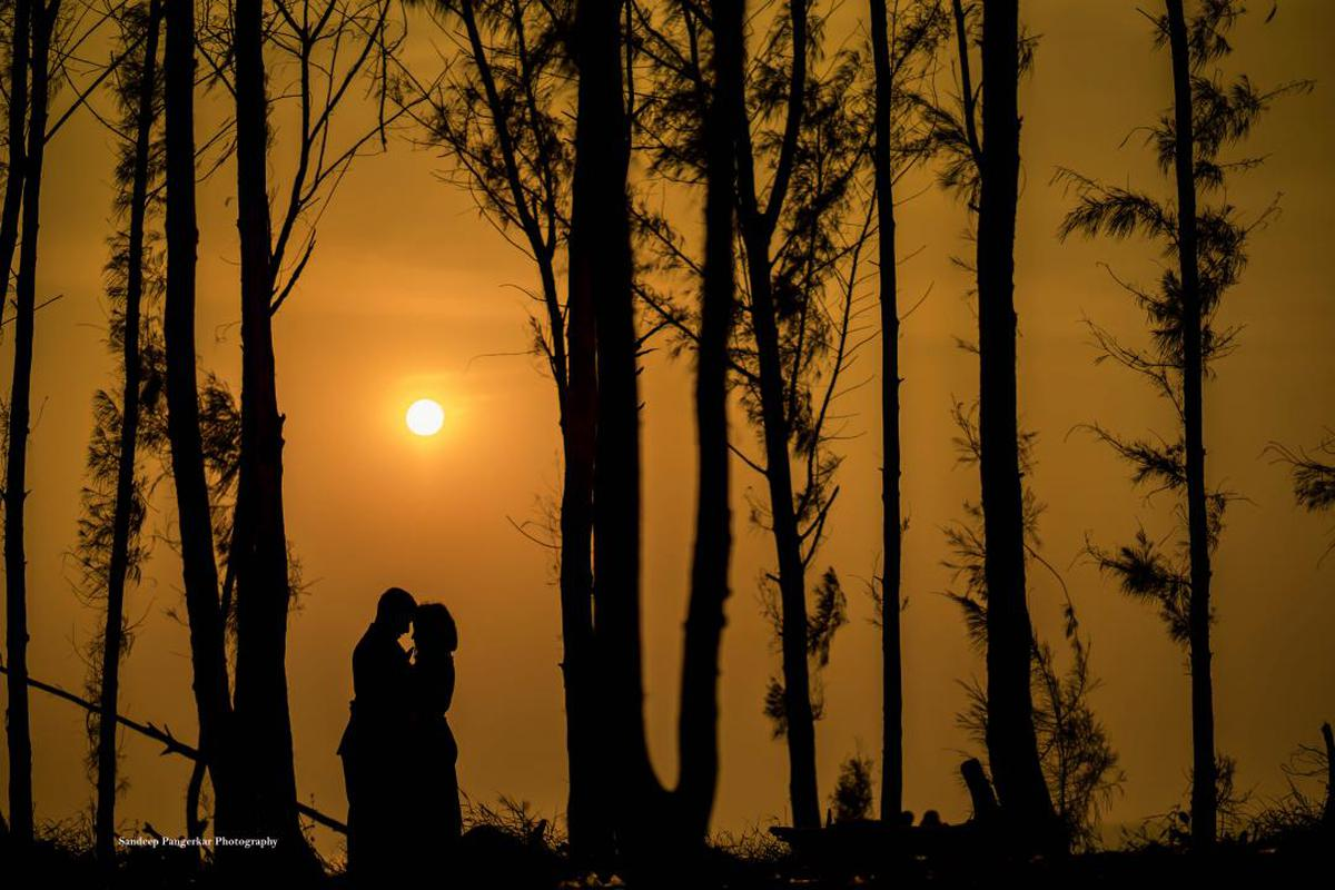 Image of People in nature, Nature, Tree, Sky, Natural landscape, Sunrise etc.