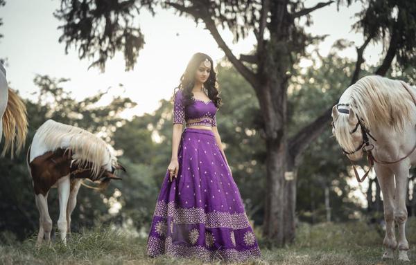 Image of Horse, Photograph, Purple, Dress etc.