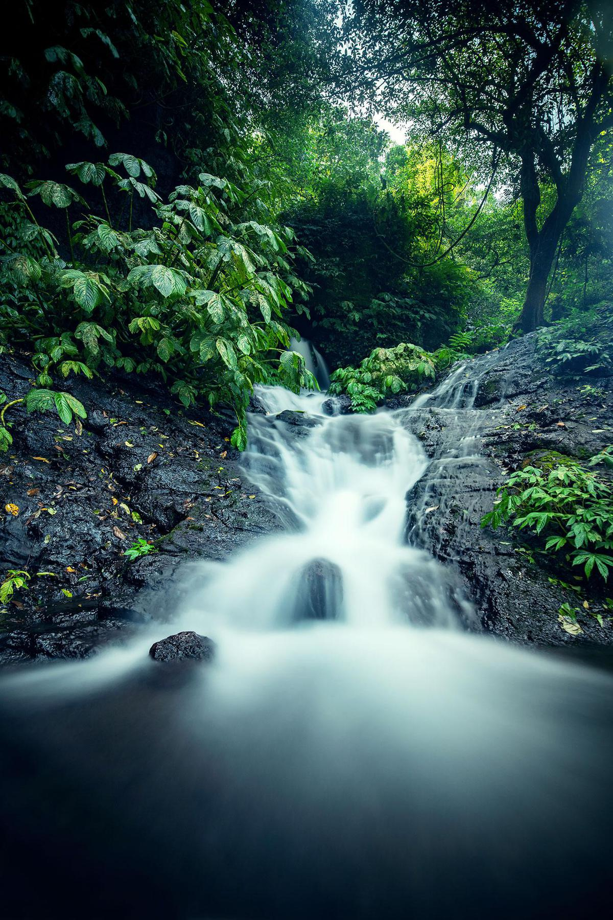 Image of Body of water, Water resources, Nature, Natural landscape, Waterfall, Water etc.
