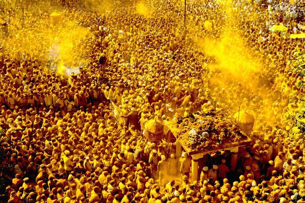 Image of Yellow etc.