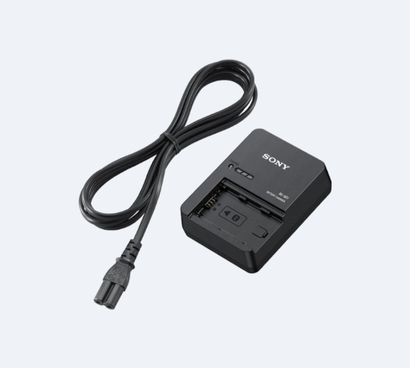 Battery charger (BC-QZ1)